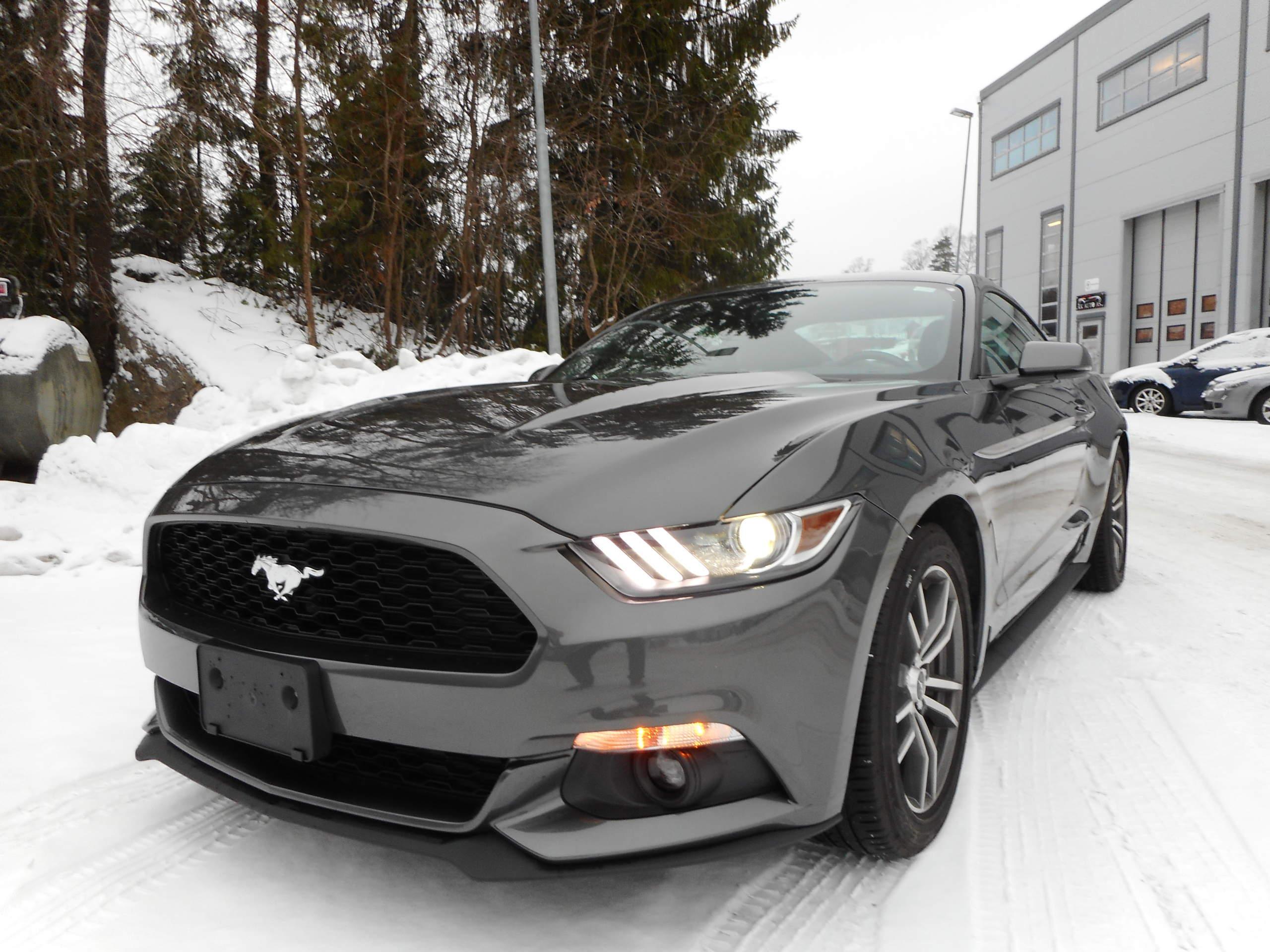 Sort Ford Mustang på snøen