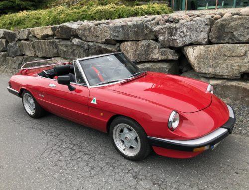 1986 Alfa Romeo Pininfarina Spider – SOLGT