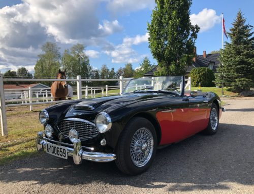 1959 Austin Healey 100-6 – Kr 389.000,-